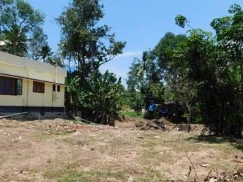 2178 sqft, Plot in Builder Project Pallippuram, Trivandrum at Rs. 17.5000 Lacs