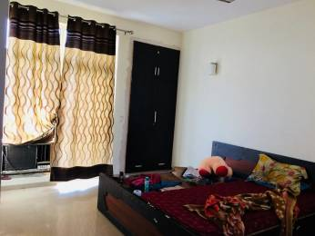 1758 sqft, 3 bhk Apartment in Ansal Celebrity Greens Sushant Golf City, Lucknow at Rs. 25000