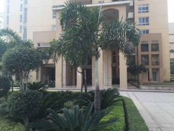 4900 sqft, 5 bhk Villa in Emaar The Palm Springs Villa Sector 54, Gurgaon at Rs. 2.2500 Lacs