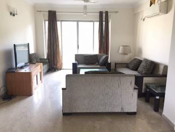 2810 sqft, 3 bhk Apartment in Parsvnath Exotica Sector 53, Gurgaon at Rs. 2.8000 Cr