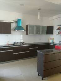 1719 sqft, 3 bhk Apartment in ABA ABA Olive County Sector 5 Vasundhara, Ghaziabad at Rs. 19000