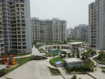 1250 sqft, 1 bhk Apartment in Shipra Srishti Ahinsa Khand 1, Ghaziabad at Rs. 14000