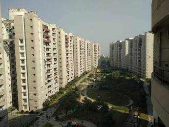 1935 sqft, 3 bhk Apartment in  ABA Olive County Sector 5 Vasundhara, Ghaziabad at Rs. 22000