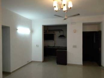 1413 sqft, 2 bhk Apartment in ABA ABA Olive County Sector 5 Vasundhara, Ghaziabad at Rs. 17000