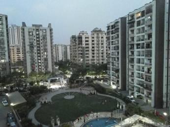 1235 sqft, 2 bhk Apartment in Builder Lotus Apartment Vaishali, Ghaziabad at Rs. 14000