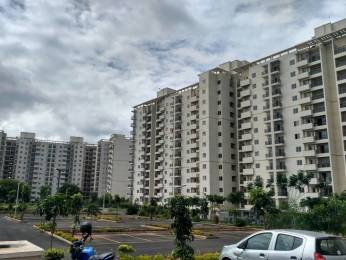 1250 sqft, 3 bhk Apartment in DLF Maiden Heights at My Town Jigani, Bangalore at Rs. 52.0000 Lacs