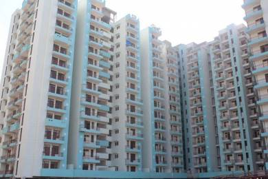 1175 sqft, 3 bhk Apartment in High End Paradise Raj Nagar Extension, Ghaziabad at Rs. 46.0000 Lacs