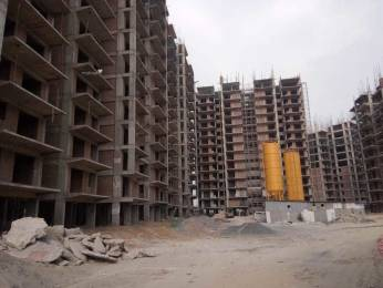 436 sqft, 1 bhk Apartment in Shree Green Court Sector 90, Gurgaon at Rs. 13.9200 Lacs