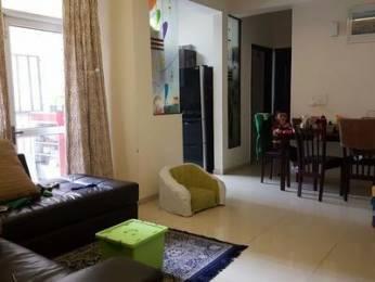 1075 sqft, 2 bhk Apartment in Ajnara Homes121 Sector 121, Noida at Rs. 13000