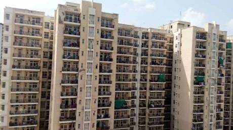 1153 sqft, 2 bhk Apartment in Omaxe New Heights Sector 78, Faridabad at Rs. 10000
