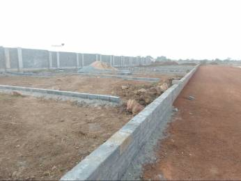 1800 sqft, Plot in Builder Project Dayal Bagh, Agra at Rs. 35.0000 Lacs