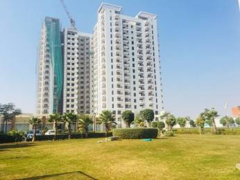 1258 sqft, 2 bhk Apartment in Eldeco Accolade Sector 2 Sohna, Gurgaon at Rs. 55.0000 Lacs
