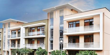 2200 sqft, 4 bhk Apartment in Omaxe Cassia Mullanpur, Mohali at Rs. 85.0000 Lacs