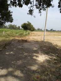 1000 sqft, Plot in Builder Tashi 2 Naubatpur Nisharpura Road, Patna at Rs. 0.0100 Cr