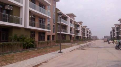 1725 sqft, 3 bhk Apartment in Omaxe Cassia Floors Mullanpur, Mohali at Rs. 73.5000 Lacs