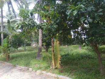 1200 sqft, Plot in Builder Asha Garden Medahalli, Bangalore at Rs. 46.8010 Lacs