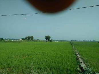 1000 sqft, Plot in Builder Prayagance town Lucknow Road, Allahabad at Rs. 6.5100 Lacs