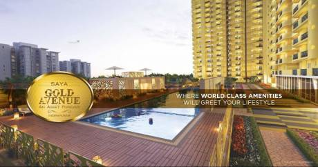 1080 sqft, 2 bhk Apartment in Saya Gold Avenue Vaibhav Khand, Ghaziabad at Rs. 69.1200 Lacs