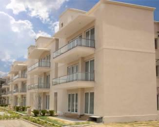 2183 sqft, 3 bhk BuilderFloor in BPTP Amstoria Country Floor Sector 102, Gurgaon at Rs. 1.4200 Cr