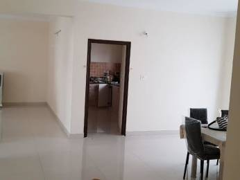 1415 sqft, 3 bhk Apartment in Alekhya Crossandra Hitech City, Hyderabad at Rs. 27000