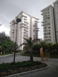 1500 sqft, 3 bhk Apartment in Shalimar Gallant Aliganj, Lucknow at Rs. 37000