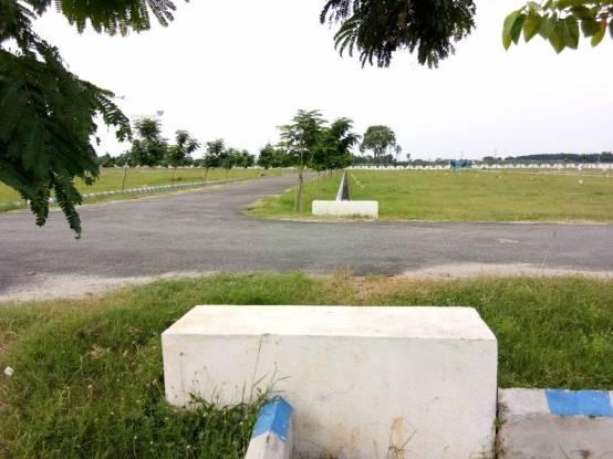 1800 sqft, Plot in Builder dollars colony 3 TirupatiGajulamandyam Bridge, Tirupati at Rs. 15.0000 Lacs