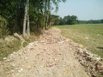 720 sqft, Plot in Janapriyo Baruipur Sadar City Baruipur, Kolkata at Rs. 4.8500 Lacs