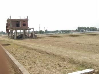 1000 sqft, Plot in Builder Tasi project Dariyapur, Patna at Rs. 5.0000 Lacs