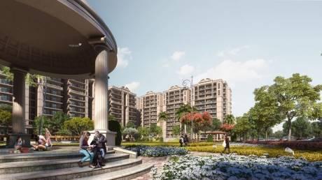 1611 sqft, 3 bhk Apartment in Builder Motia Blue ridge Sector 20, Panchkula at Rs. 52.9000 Lacs