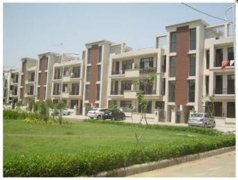 900 sqft, 3 bhk Apartment in TDI TDI City 2 Plots Sector 110 Mohali, Mohali at Rs. 36.5000 Lacs