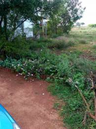 1499 sqft, Plot in Builder Project SIHS Colony, Coimbatore at Rs. 11.0000 Lacs