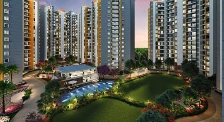 594 sqft, 1 bhk Apartment in Shapoorji Pallonji Joyville Phase 2 Hinjewadi, Pune at Rs. 33.2600 Lacs