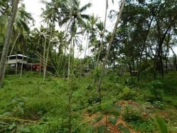 801 sqft, Plot in Builder Project Vilappilsala Malappanamcode Kattakkada Road, Trivandrum at Rs. 90000