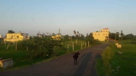 1500 sqft, Plot in Builder guduvancherry indira nagar Guduvancheri, Chennai at Rs. 25.5000 Lacs