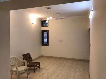 1300 sqft, 3 bhk Apartment in Builder Project Sheikh Sarai Phase2 New Delhi, Delhi at Rs. 1.6500 Cr