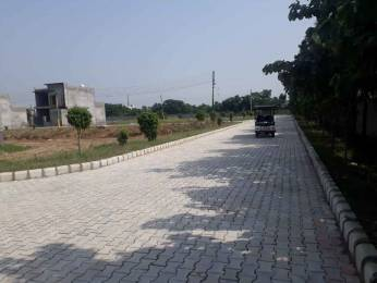 1350 sqft, Plot in AKME Projects Builders Township Jandiali, Ludhiana at Rs. 25.5000 Lacs