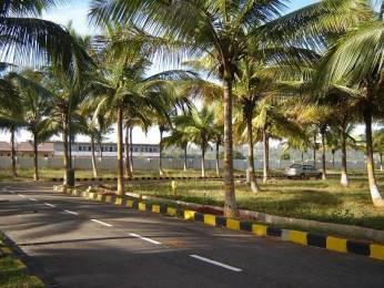 1200 sqft, Plot in Builder Jr coconest Marsur, Bangalore at Rs. 22.2000 Lacs