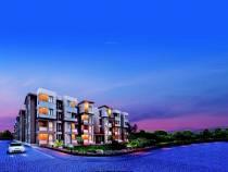 Dream Home Property