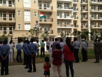 1600 sqft, 3 bhk Apartment in Omaxe Spa Village Sector 78, Faridabad at Rs. 55.0000 Lacs