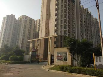 1299 sqft, 3 bhk Apartment in Aditya Luxuria Estate Dasna, Ghaziabad at Rs. 8000