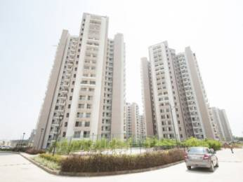 1790 sqft, 3 bhk Apartment in Mapsko Royale Ville Sector 82, Gurgaon at Rs. 95.0000 Lacs