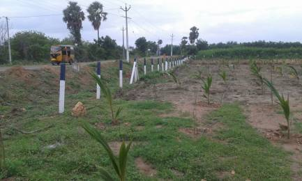 900 sqft, Plot in Builder Siri Vanam Vijayawada Bypass Road, Vijayawada at Rs. 99000
