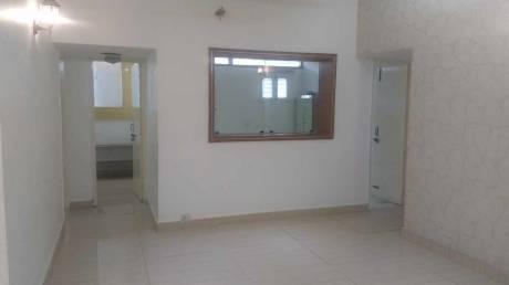 1350 sqft, 2 bhk BuilderFloor in Unitech South City II Sector 49, Gurgaon at Rs. 23000