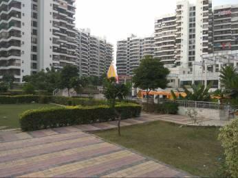 1270 sqft, 2 bhk Apartment in Crossings Infra Crossing Republik, Ghaziabad at Rs. 8000