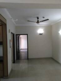 1050 sqft, 2 bhk Apartment in Ajnara Gen X Crossing Republik, Ghaziabad at Rs. 8000