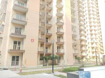 1764 sqft, 3 bhk Apartment in Anthem French Apartment Sector 168, Noida at Rs. 66.0000 Lacs