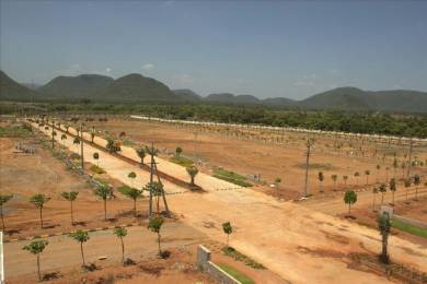 1503 sqft, Plot in Legend Kanak Mamidilova, Visakhapatnam at Rs. 24.2150 Lacs