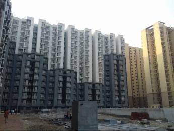 840 sqft, 2 bhk Apartment in Aditya Urban Homes Dasna, Ghaziabad at Rs. 33.0000 Lacs