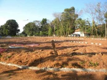 2178 sqft, Plot in Builder Project Venjaramoodu Kesavadasapuram Road, Trivandrum at Rs. 10.0000 Lacs