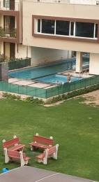 2300 sqft, 3 bhk Apartment in Hanumant Bollywood Heights Sector 20, Panchkula at Rs. 78.5000 Lacs